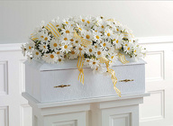 Daisy Infant Casket Spray