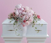 Pink Infant Casket Spray with Plush