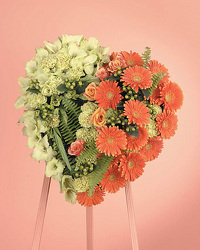 Orange Gerbera Daisy and Green Viburnum Heart